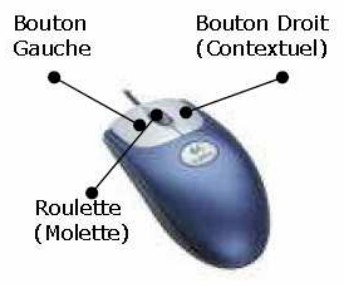 Utilisation de la souris